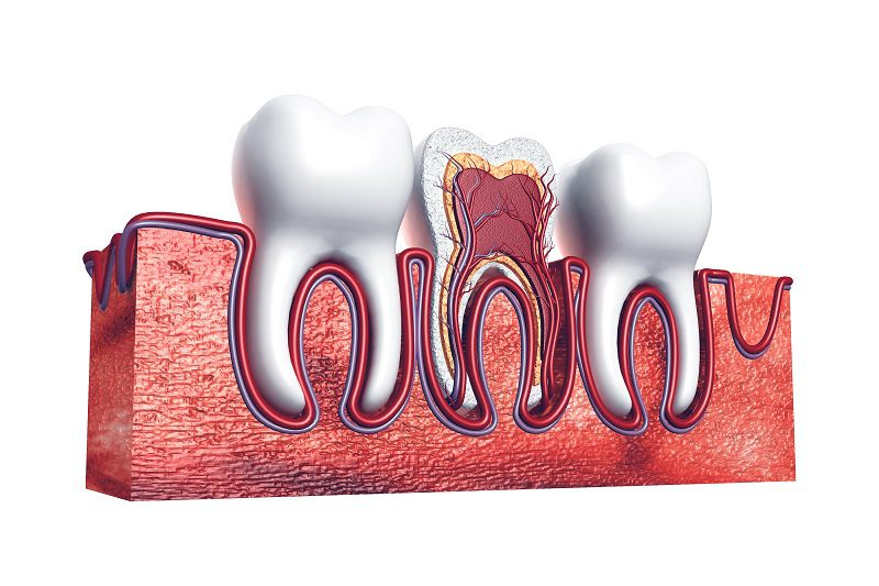 Root Canal Treatment and How It Saves Teeth